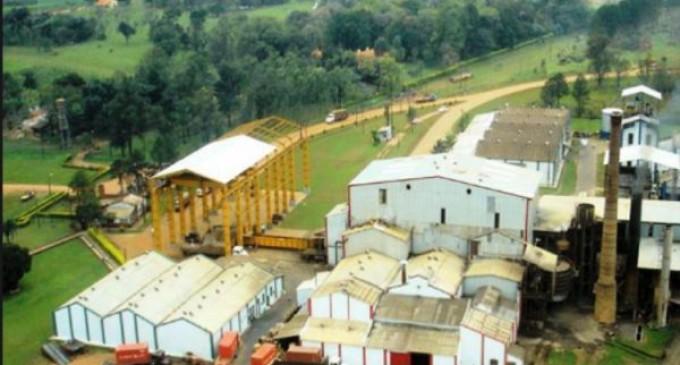 Senadores aprueban subsidio para cañicultores de Azucarera Iturbe