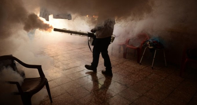 China reportó su primer caso de zika en un hombre que viajó a Venezuela