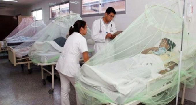 """Hace 15 años Paraguay convive con el dengue y """"nadie hace nada"""""""