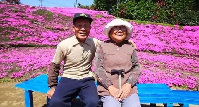Plantó miles de flores para que su esposa ciega las oliera