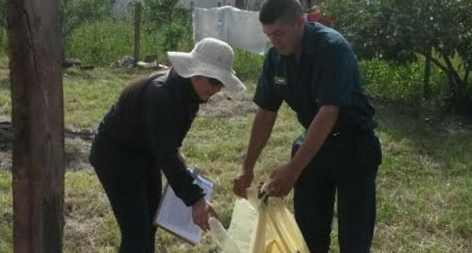 Encuentran 1.589 casas con criaderos, en Itapúa