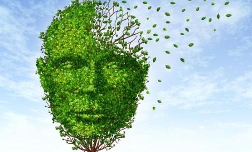 Detectan un posible freno al avance del Alzheimer