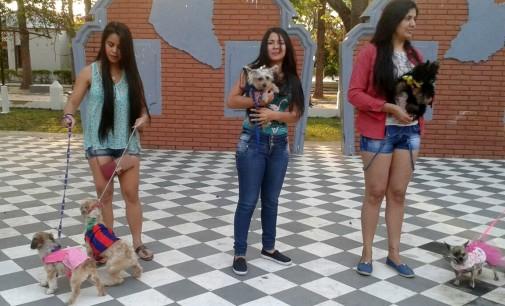 Mascotas desfilan y se protegen contra la rabia en Pilar