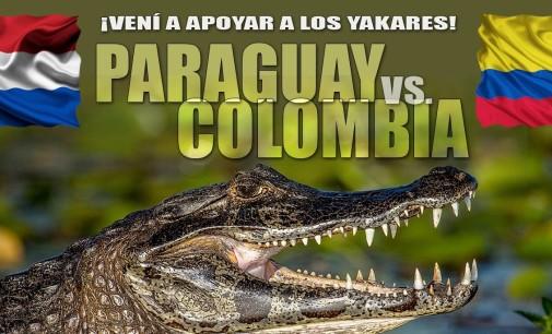 Paraguay vs Colombia se enfrentan por la permanencia