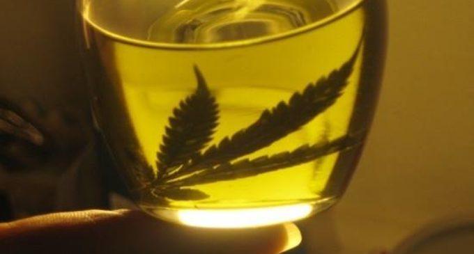 Unas 60 personas utilizan marihuana con fines terapéuticos
