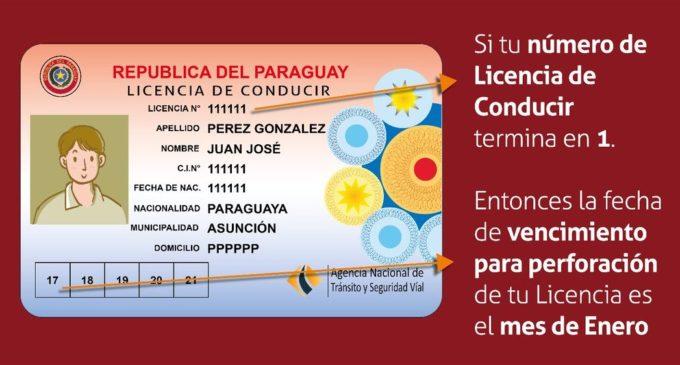 Licencias de conducir unificadas se realizarán cuando las mismas venzan