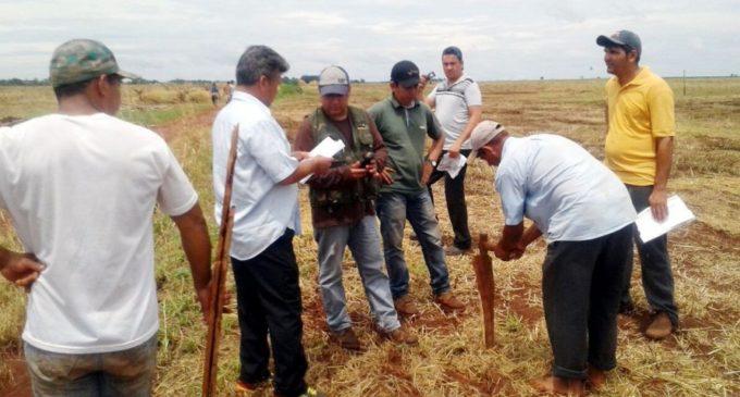 54 familias campesinas serían beneficiadas con tierras
