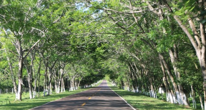 Santa Elena, ciudad amiga de la bicicleta