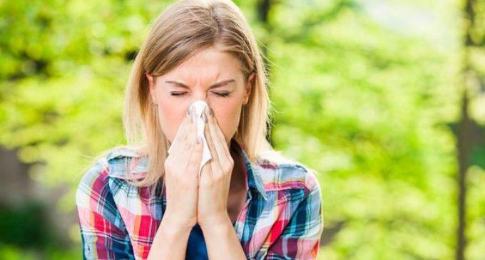 Cuáles son las alergias más comunes en verano