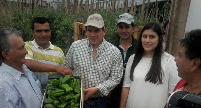 El MAG presentó App para asistir a agricultores