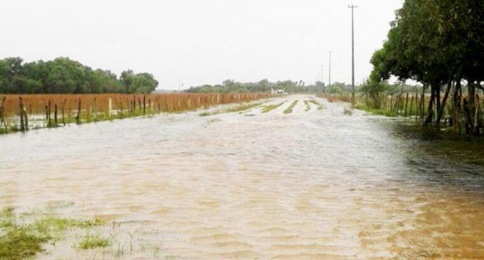 Miles de hectáreas de cultivos golpeados por inundaciones en Ñeembucú