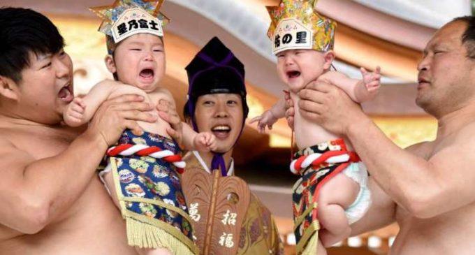 La lucha sagrada entre 'bebés sumo' que hace las delicias de los padres japoneses