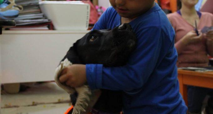"""""""Mi can amigo"""" complementa el cuidado de niños y adolescentes con cáncer"""