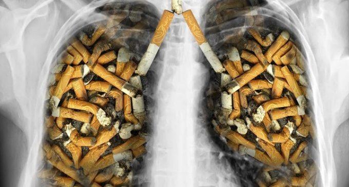 Hoy se conmemora el Día Mundial sin Tabaco