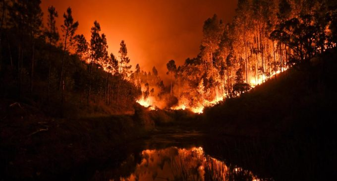 Aumentan a 64 muertos y 250 heridos tras un incendio forestal en Portugal