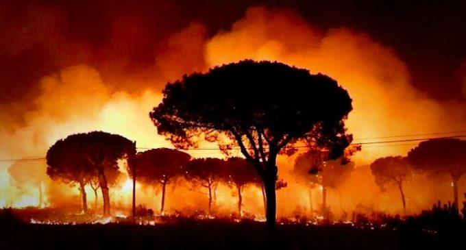 Fuerte incendio provoca al menos 2.000 evacuados en parque nacional de España