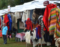 Festival del Ovecha Rague se extiende durante el fin de semana