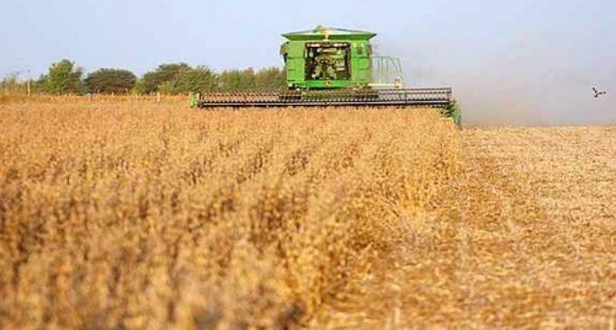 """Impuesto a la soja """"perjudicará a la economía del país"""", dice nueva ministra de Hacienda"""