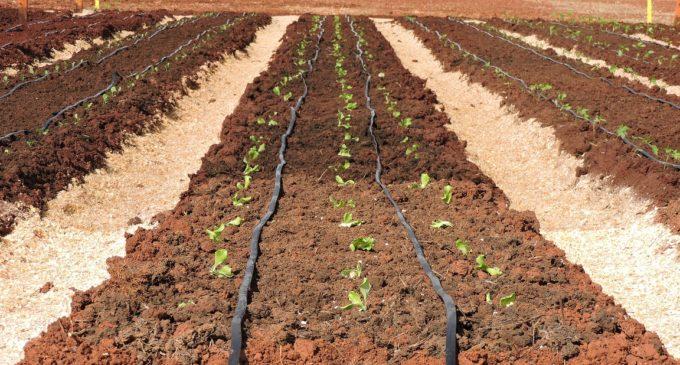 Capacitación para productores en Itapúa