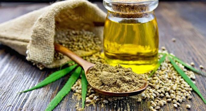 Aceite de Cannabis: No es curativo pero ayuda a mejorar la calidad de vida del paciente