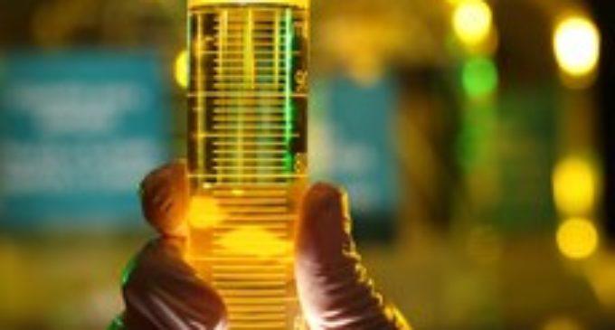 Esperan que producción de biodiesel se reactive tras fijación de nuevo precio