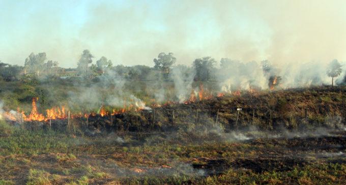 Controlan incendio de pastizal en María Auxiliadora, Itapúa