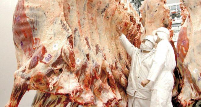 Carne paraguaya llega a Emiratos Árabes