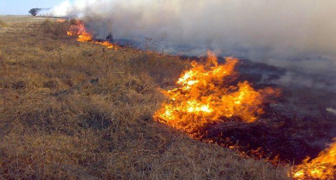 """Buscan reducir cantidad de siniestros en campos con """"Teledetección de Incendios"""""""
