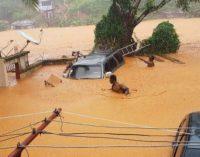 Más de 400 muertos y cientos de desaparecidos por deslaves causados por fuertes lluvias en Sierra Leona