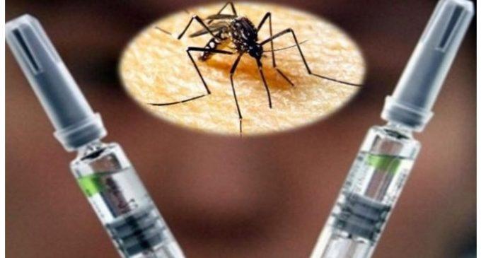 """""""Por falta de evidencia de efectividad"""", recomiendan a Salud Pública no incluir vacuna antidengue en esquema nacional"""