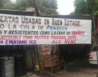 """La senadora Blanca Fonseca demandará a gomero """"por manchar su dignidad"""""""