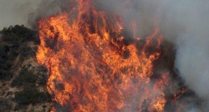 Los Ángeles sufre el incendio más devastador en su historia