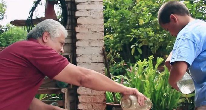 Chikungunya: Unos minutos para eliminar criaderos mantienen a tu familia a salvo