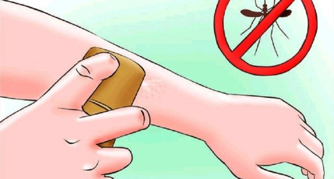 Evita picaduras de mosquitos en actividades al aire libre