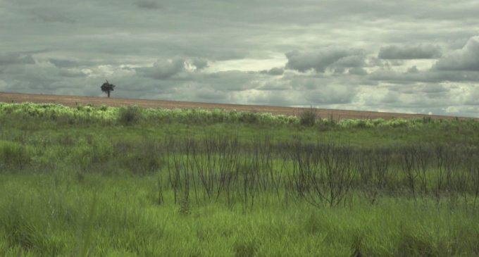 Denuncian que Ejecutivo modificó ley de escala tributaria por tenencia de tierras