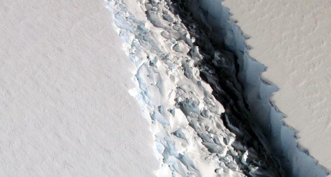 Descubren un vasto ecosistema oculto por más de cien mil años tras quiebre de un iceberg