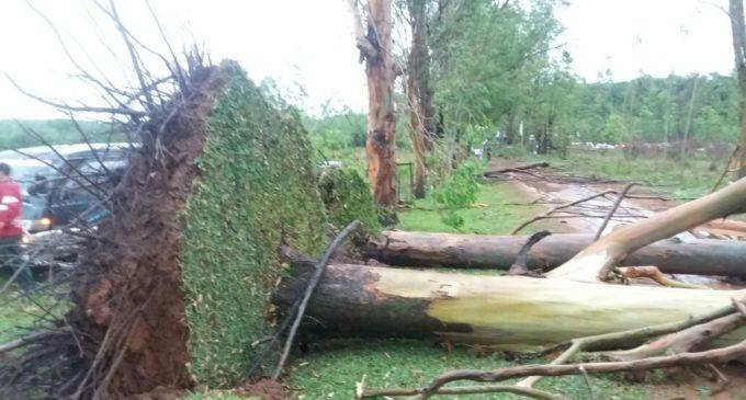 Vientos de hasta 137 km/h se registraron durante el temporal de ayer en Caaguazú