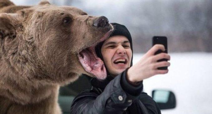 Selfies con animales, un nuevo tema a debatir