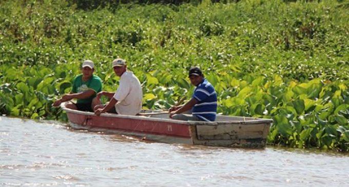 Veda pesquera inicia en noviembre