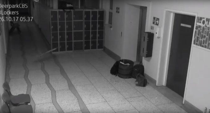 ¿Otra vez ataca el fantasma?: Nuevas 'actividades paranormales' son detectadas en escuela irlandesa