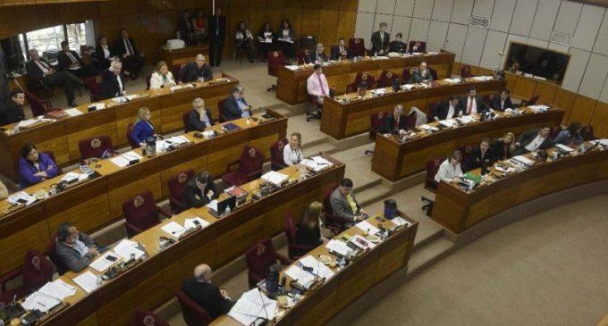 Mayoría opositora en Senado busca eliminar potestad del presidente de vetar Presupuesto