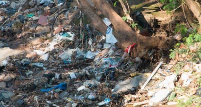 """Residuos tóxicos en la Costanera: """"La Seam me dice que no es problema de ellos"""""""