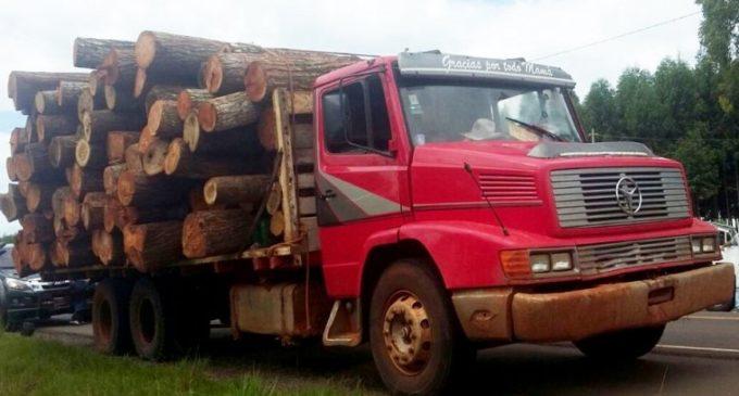 """""""Tenemos deforestaciones ilegales que cuentan con protección de autoridades"""""""