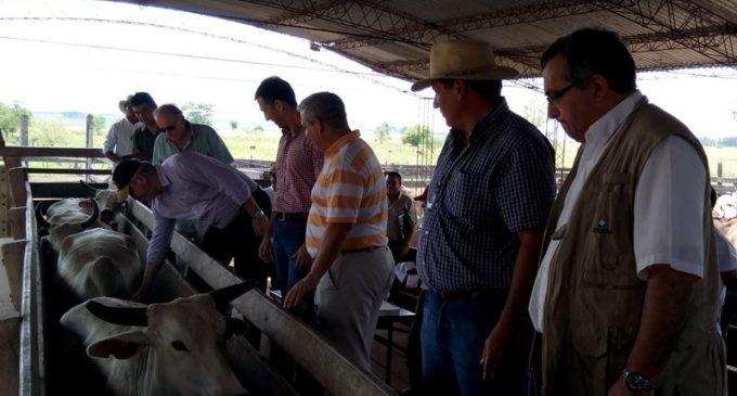 Senacsa cierra el año con un aumento en la exportación de carne y disminución de infectados de brucelosis