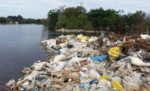 Cantidad de residuos de plásticos superará al número de peces en el mar