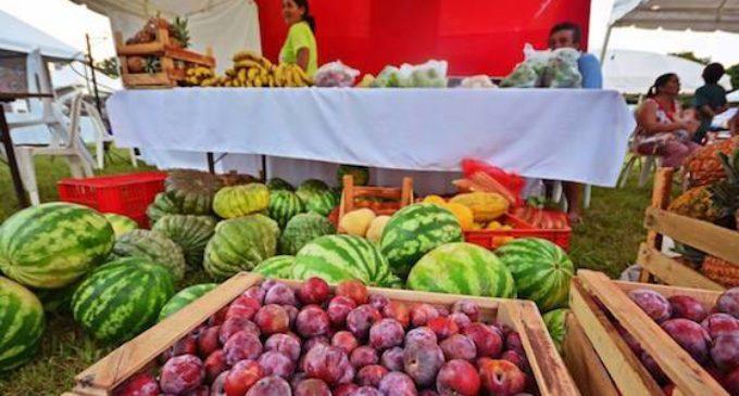 Se acerca la Expo Frutas en La Colmena