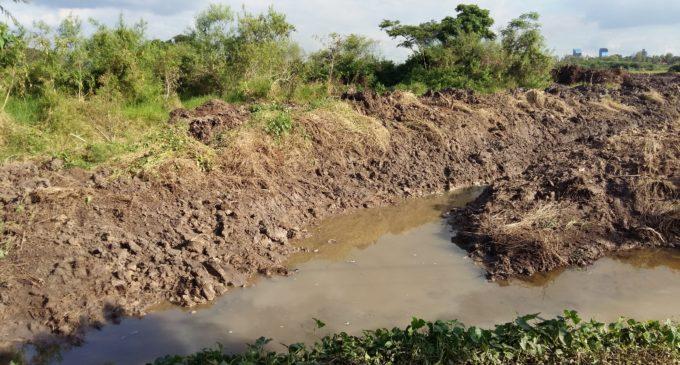 Obras en Parque Guasú siguen paradas