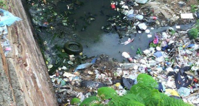 Un fallecido más y 83 nuevos casos de dengue
