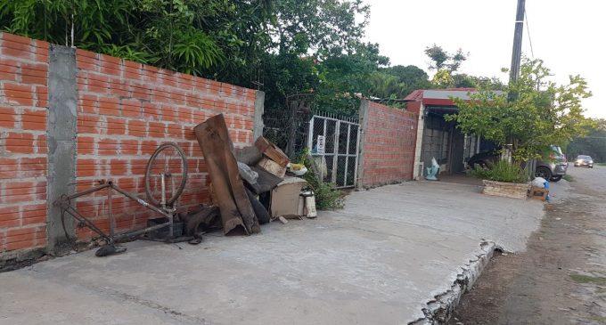 Dengue: 5 de cada 100 viviendas encuestadas están con criaderos del aedes aegypti