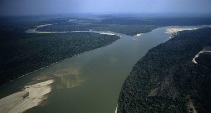 Revelan una civilización perdida en la Amazonia
